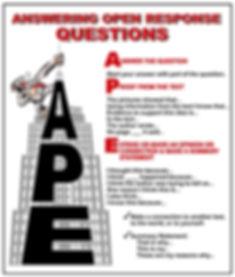 ape poster (1).jpg