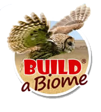 biome.png