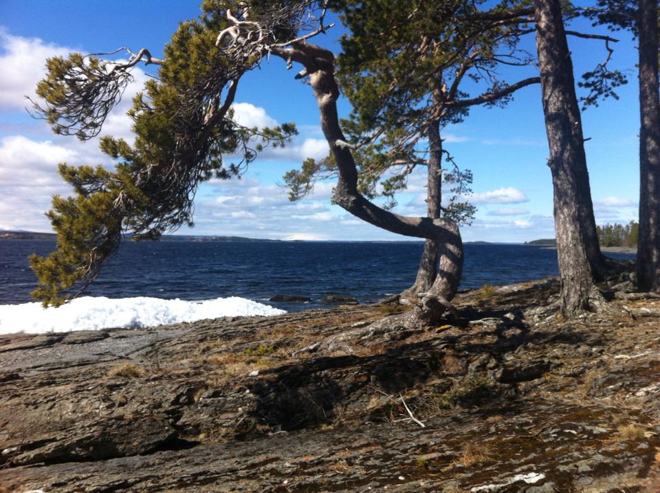 åreskutan från Norderön maj 2015