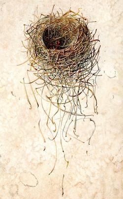 Nest: Unravel