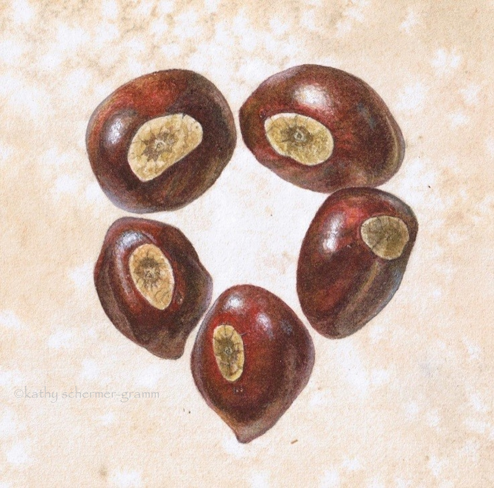 Painted Buckeye Heart