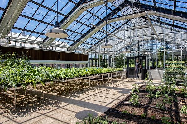 Greenhouse Inside 2 (Full Size).jpg
