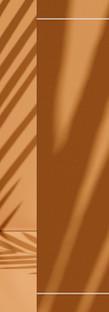 2508x914-solari2019-2.jpg