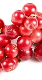 cranberry-mirtillo-rosso.jpg