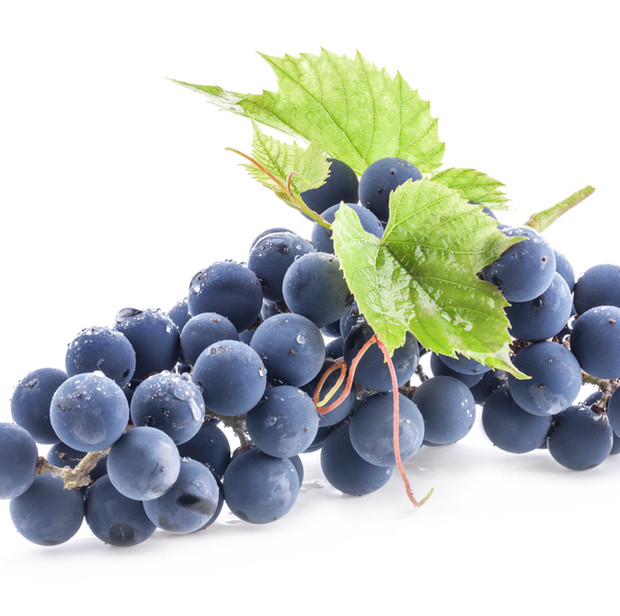 Acini d'Uva