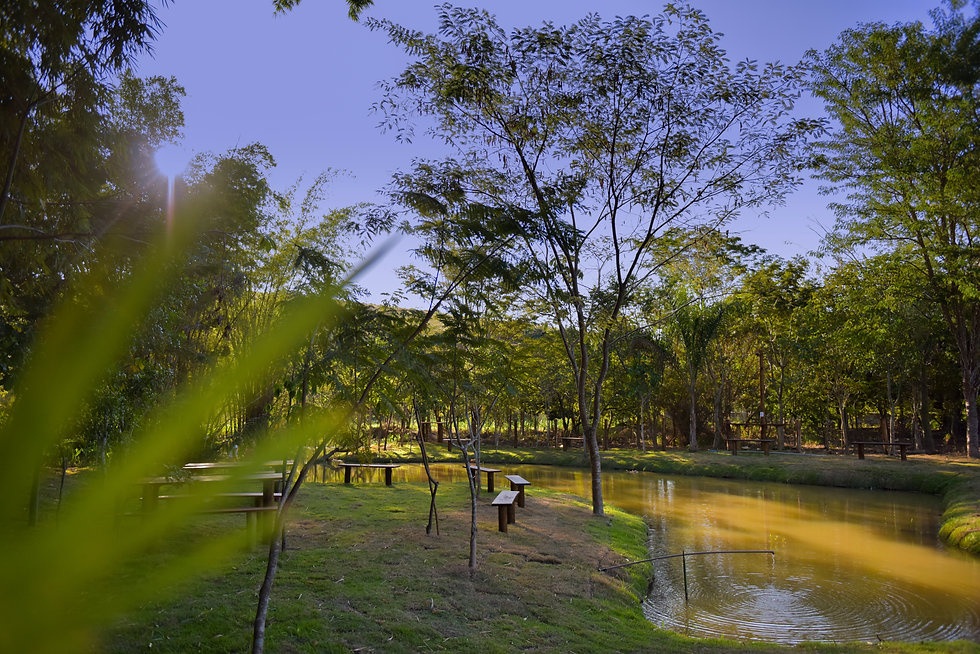 Verana_046_20052020.jpg