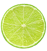 Slice of lime PNG - 480x525.png