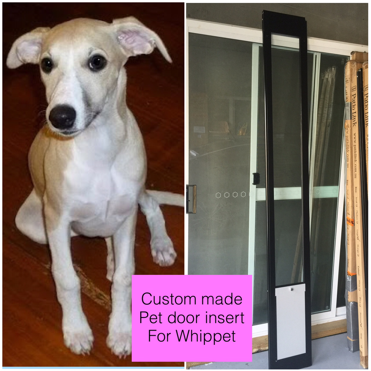 Whippet Custom door.jpg