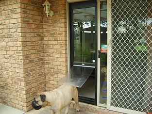 Pet door insert for sliding door