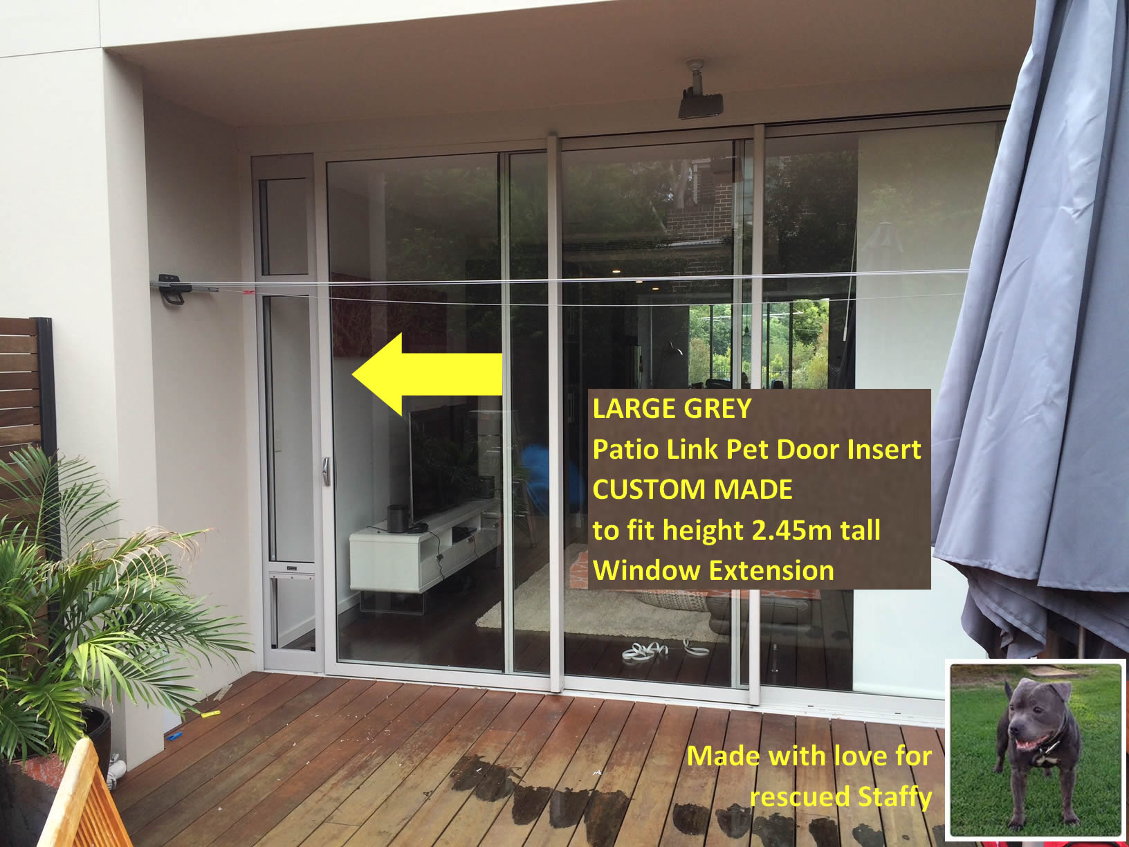 Large Window Extensions Grey Staffy.jpg