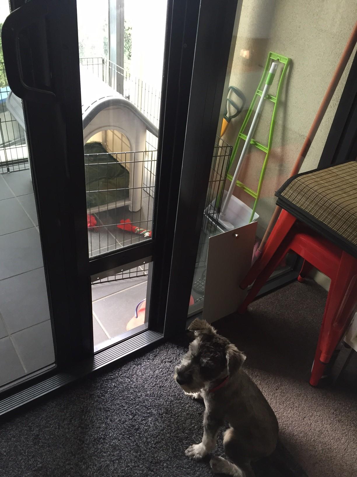 Medium Black Pet Door Insert