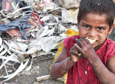 """""""Food""""- talanok vs. Food waste"""