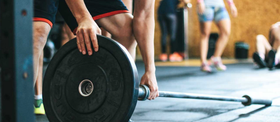 The Relationship Between Nutrition and Muscle Growth