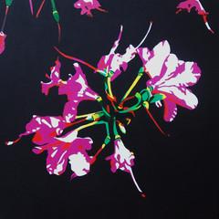 'Flower 4' 2013