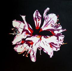 'Flower 2' 2013