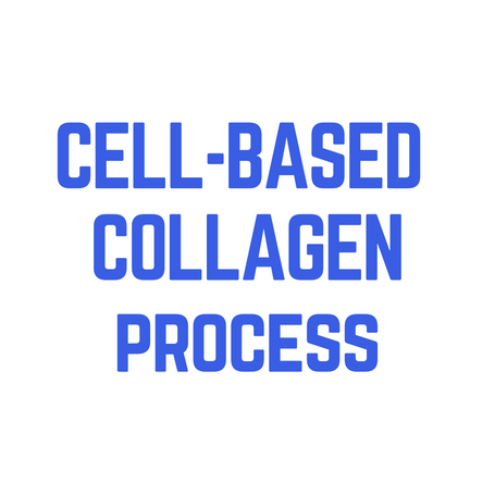 Whereas traditional collagen and gelatin on the market rely on animal carcasses and bits &