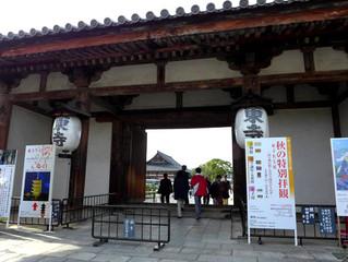 東寺秋期特別公開に行ってきました
