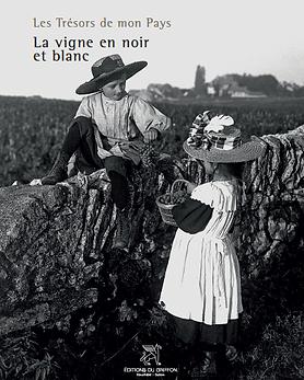 La vigne en Noir et blanc