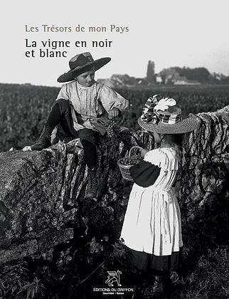 photographie noir et blanc vigne vignoble neuchatel suisse