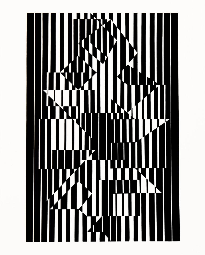 Ilava, Album Linéaires, Vasarely