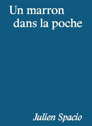 Julien Spacio - Un marron dans la poche