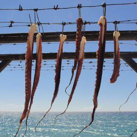 Rybářský háček