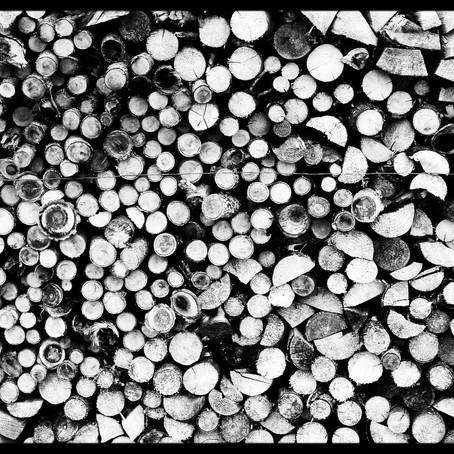 Přivezli nám dřevo