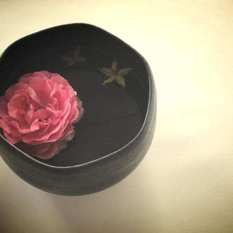 Výhonek osmilisté růže