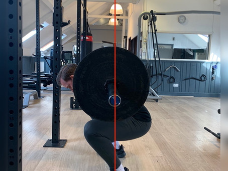 Why the low bar squat?
