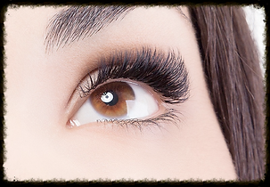 volume lash fill, lash extensions, best volume lash extensions