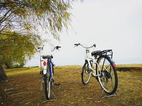 Bicicletas de paseo en Marina Colbún