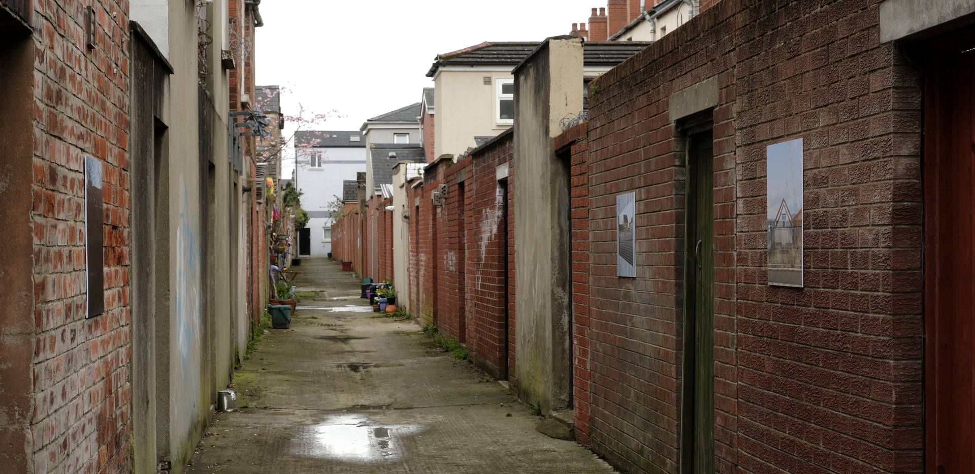 20210325 Limin Alley 181.jpg
