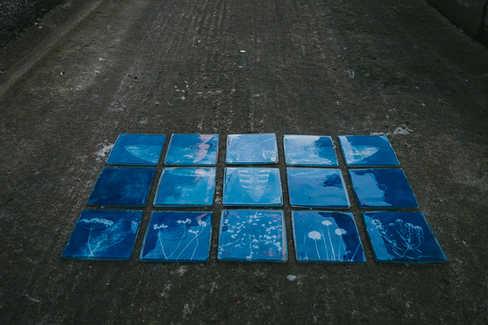 ''Night Pollinator' - cyanotype prints embedded in resin by Jonathan Brennan.