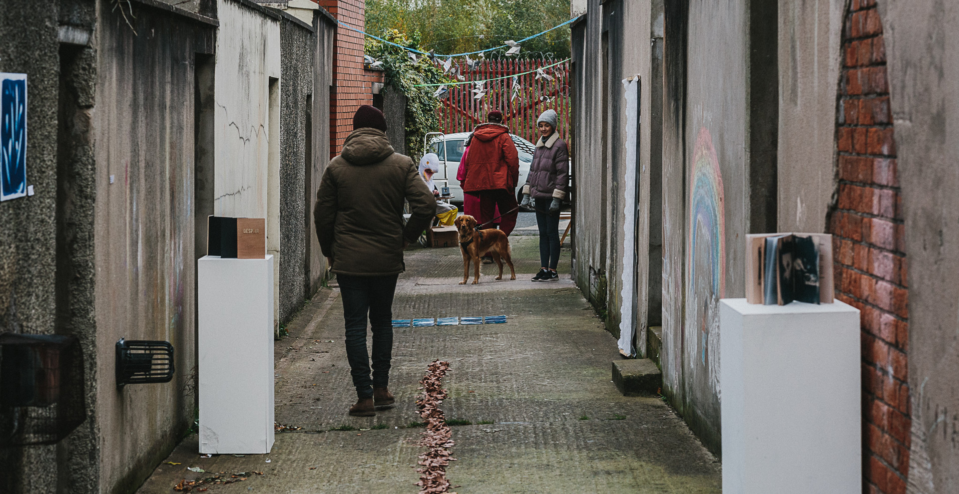 Cental Alley    Photo Credit; Neal Campbell.