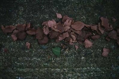 'Treshold' - instalation of unfired clay by Anna Donovan. (detail)  Photo Credit; Neal Campbell