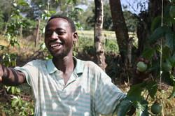 Passionfruit Farm