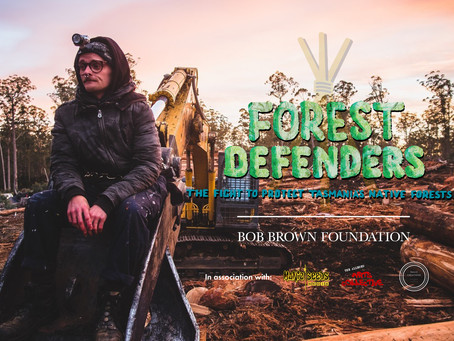 BEAM screens Forest Defenders doco
