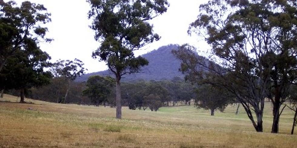 BEAM Bushwalk at Mount Piper