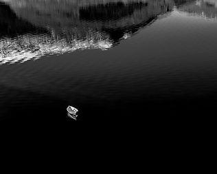 Båt på sjø.jpg