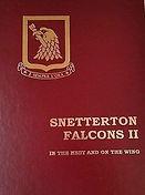 snetterton-falcons-ii-nest-wing-1997_1_6