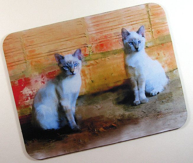 Sugar and Spice cat fabric topped mousemat