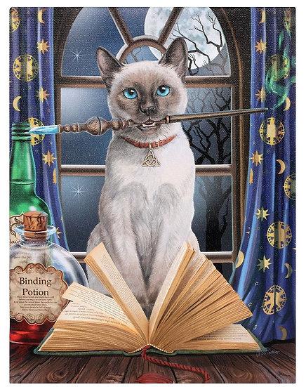 Lisa Parker 'Hocus Pocus' cat canvas wall plaque