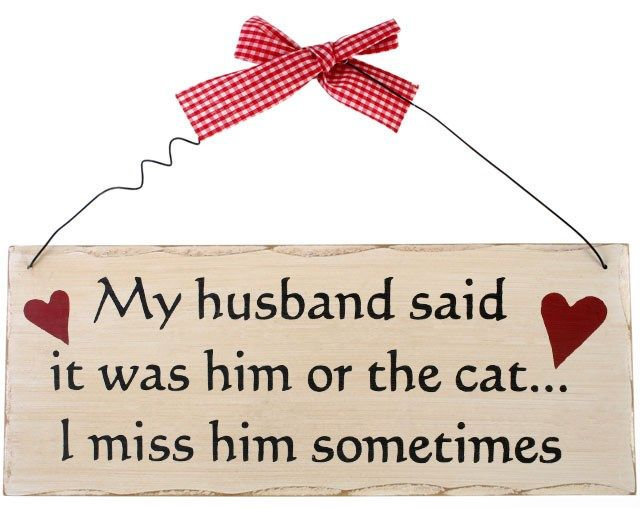 Shabby chic style wall plaque 'My husband said ...'