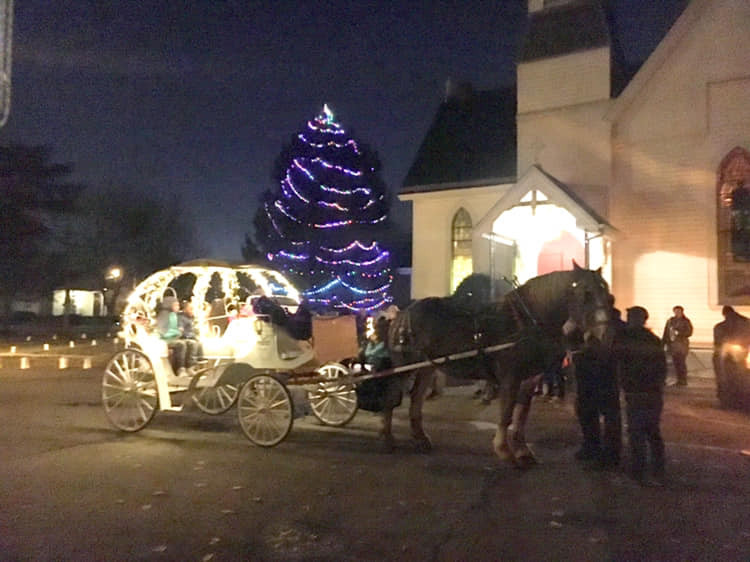 Christmas Lighted Horse Drawn Carriage in Hartwell, Ohio