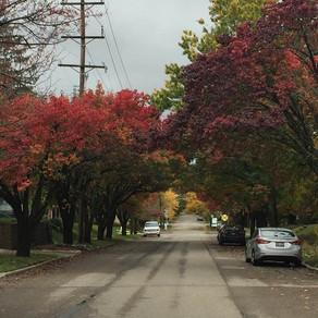 Hartwell's Autumn Beauty!