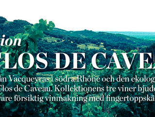 Inleder samarbete med Gaston vin