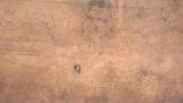 Codice su Paolo Uccello 3
