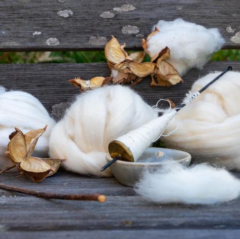 Bonus! Spinning Cotton for Lace Making