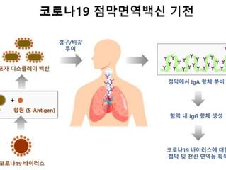 [기사] 제노포커스, 국제백신연구소 등과 코로나 백신 컨소시엄 구성