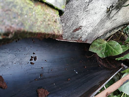 gutter cleaning emsworth